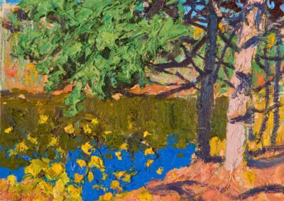 blue and gold, Oxtongue River, 2021