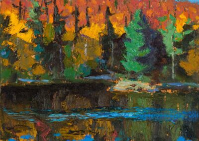 fall, Algonquin, 2021