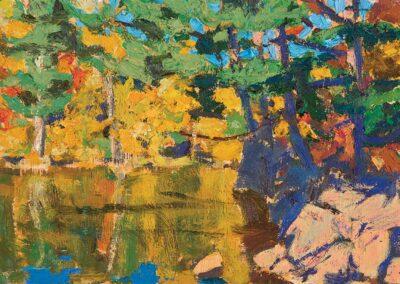 shade, Oxtongue River, 2021