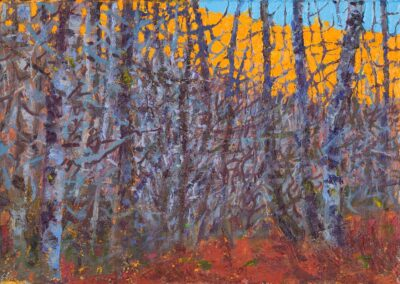 flaming larches, Rogie, 2021